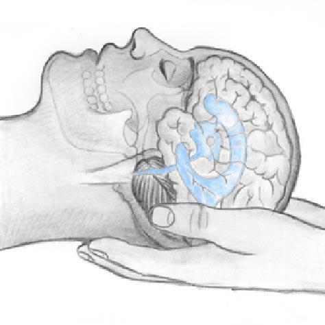 sistema cranio sacrale